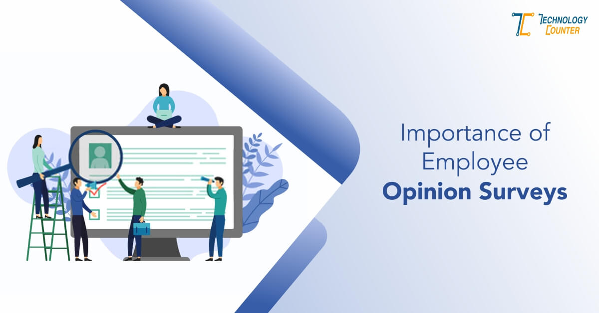 Importance of Employee Opinion Surveys